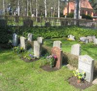 Kyrkogårdsbilden visar skuggröna
