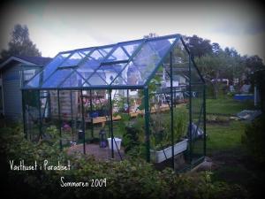 Växthus Odla : Odla växthus från skånskabyggvaror bra trädgårdsforumet